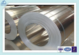 Special/Normal Size Cold/Hot Rolling Aluminum Coil of Ho/H14/H24 (3003, 3004, 3103, 3105)