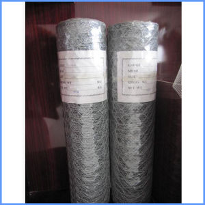 Hot Dipped Galvanized Fencing Wire Mesh pictures & photos