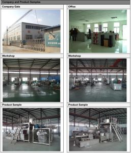 Fish Farming Automatic Floating or Sinking Fish Feed Processing Line pictures & photos