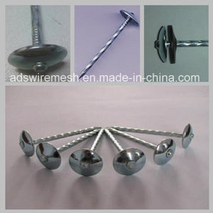 Bwg8 2.5′′ Twisted Shank Umbrella Head (ISO9001) pictures & photos
