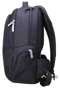 New Style Backpack for Laptop School Travel Hiking Use (SB2124) pictures & photos