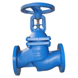 Bellows Globe Valve, DIN3356 pictures & photos