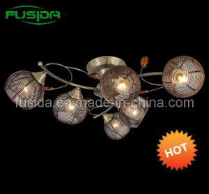 Popular Iron Ball Chandelier Lighting& Iron Lamp pictures & photos