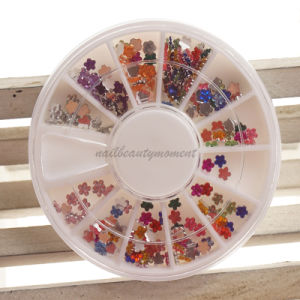 Art Nail Manicure Beauty Flower Rhinestone Wheel Decoration Products (D74) pictures & photos