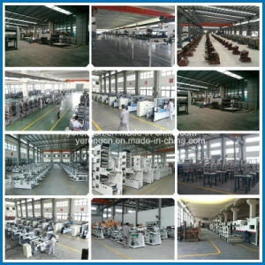 High Quality Color Steel Sandwich Panel Production Line From China pictures & photos
