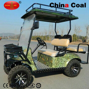 2+2 Seats Electric Gas Powered Golf Buggy Sightseeing Car pictures & photos