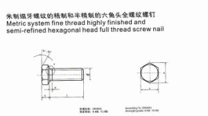 Metric System Fine Thread Highly Finished and Semi-Refined Hexagonal Head Full Thread Screw Nail pictures & photos