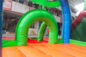 Cheap Inflatable Bounce House Combo Chb734 pictures & photos