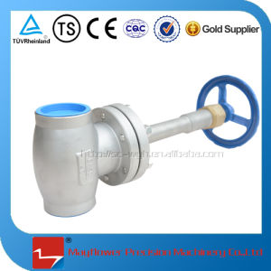 Long Stem Stop Valve for LNG Station pictures & photos