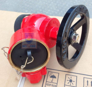 "Flange Type 2.5"" BS336 Landing Valve pictures & photos"