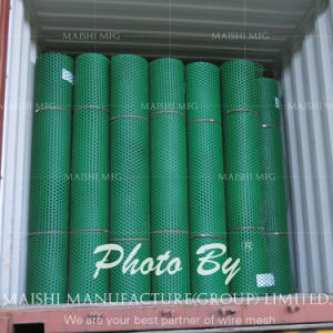 Extruded PP Netting pictures & photos
