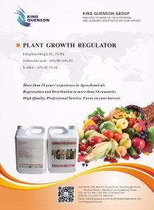 King Quenson High Effective Supplier Products List Plant Growth Hormone pictures & photos