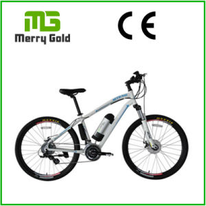Front&Rear Tektro Disc Brake Ebike 36V 250W Electric Bike for Sale pictures & photos