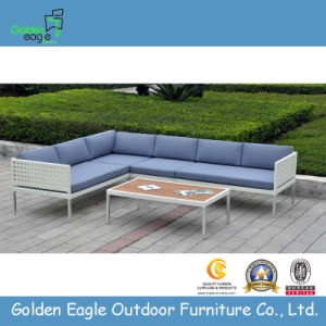Simple Design and Cheap Outdoor Garden Rattan Sofa Set