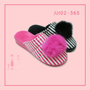 Spring Flip-Flop Soft TPR Indoor Nice Slipper pictures & photos