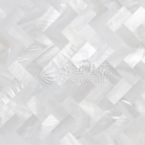 Special Natural Mother of Pearl Shell Building Material for Wall pictures & photos