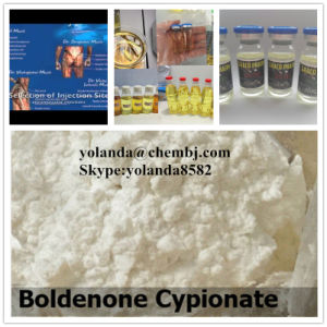 Injectable Steroid Powder Boldenone Cypionate Dosage 200mg for Bodybuilding Nutrition pictures & photos