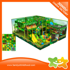 Multifunctional Forest Style Theme Indoor Playground Equipment for Sale pictures & photos