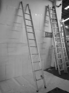 6m Aluminum Extension Scaffolding Ladder pictures & photos