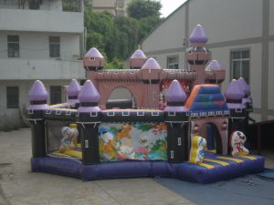 Popular New Designed inflatable Castles for Chrildren pictures & photos