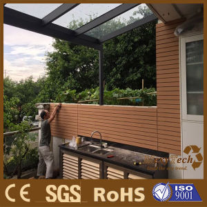Guangzhou Outdoor Wood Plastic Composite WPC Wall Panel WPC Exterior Wall Cladding pictures & photos