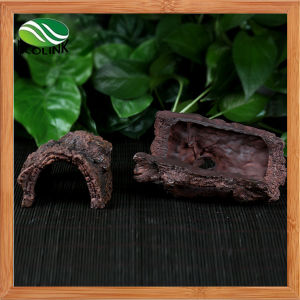 Zoo Med Laboratories Sinking Resin Betta Log Provides Shelter for Sleeping or Hiding Naturalistic Looking pictures & photos