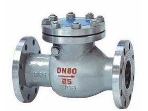 Stainless Steel Wcb Cast Steel Body Flange End Swing Check Valve pictures & photos