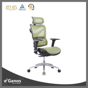 Mesh Office Chair for Office Staff and Client pictures & photos