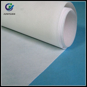 Popular in Europe Market 70g 160cm PP Non Woven Fabric pictures & photos