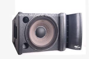 """Vrx932la Single 12"""" Passive, Active Line Array Speaker pictures & photos"""
