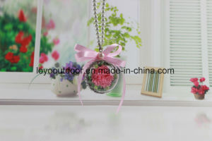 Preserved Fresh Flower Wedding Decoration Christmas Decoration pictures & photos