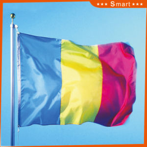 Custom Waterproof and Sunproof National Flag Romania National Flag Model No.: NF-059 pictures & photos