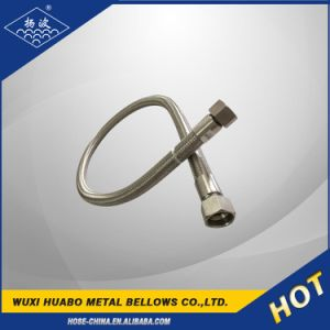 Flexible Metal Hose with Female/ Male Fitting Assemblies pictures & photos