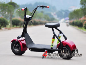 500W 800W Brushless Motor 2 Wheels Citycoco Electric Scooter pictures & photos
