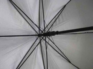 27inch Anti UV Silver Coating Auto Open Golf Umbrella (GU029) pictures & photos