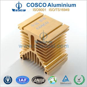 Customized Aluminum Amplifier Heat Sink Extrusion (TS16949: 2008 Certified) pictures & photos