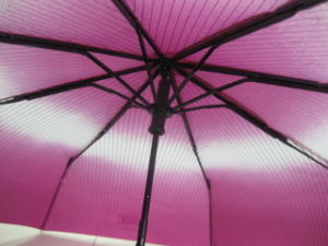 Most Strong Frame 3 Fold Umbrella (3FU015) pictures & photos