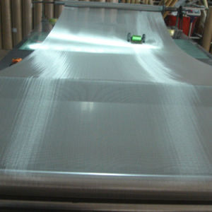 Stainless Steel Filter Screen/Ss Screen Mesh/Ss Wire Cloth pictures & photos