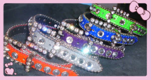 Bb Simon Luxury Dog Collar, Crystal Pet Collar pictures & photos