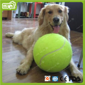 Pet Toys Large Size Tennis Dog Chew Product pictures & photos