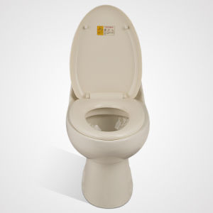 China Manufacturer New Design Ceramic Siphonic One Piece Toilet pictures & photos