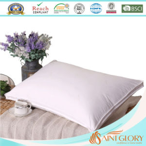 Pure Cotton Cover UK Standard Size White Polyester Pillow pictures & photos