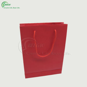 Paper Shopping Bag (KG-PB041)