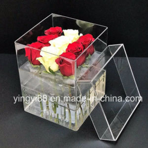 2017 New Style Acrylic Transparent Rose Box pictures & photos