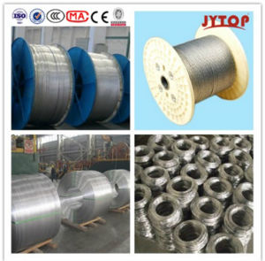 AAC Conductor and All Aluminum Alloy Conductor for AAAC Cable pictures & photos