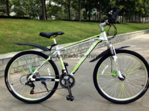 26 Inch Downhill Mountain Electric Bike pictures & photos