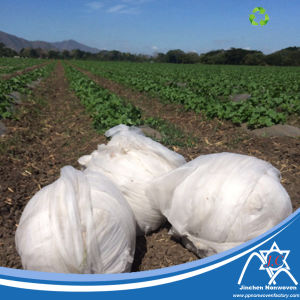 17GSM UV Nonwoven Fabric for Agriculture pictures & photos