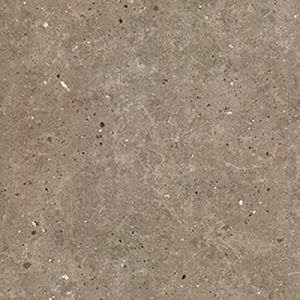 Dull Surface Full Body Ceramic Floor Tile pictures & photos
