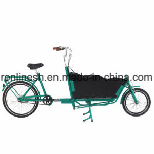 Gates Carbon Belt Driven 2 Wheel Cargo Bicycle/Two Wheel Cargo Bike/Delivery Bike/Twowheel Delivery Bicycle/250W/350W/500W Belt Drive Electric Bike Nexus 7speed pictures & photos