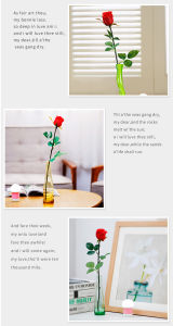 Christmas Decoration Novelty Flowers Rose Flower +Night Light pictures & photos